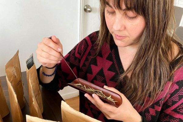 Degustación de Silver Needles